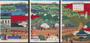 Vista de los trenes con trayecto de Ueno (Tokio) a Kumagaya
